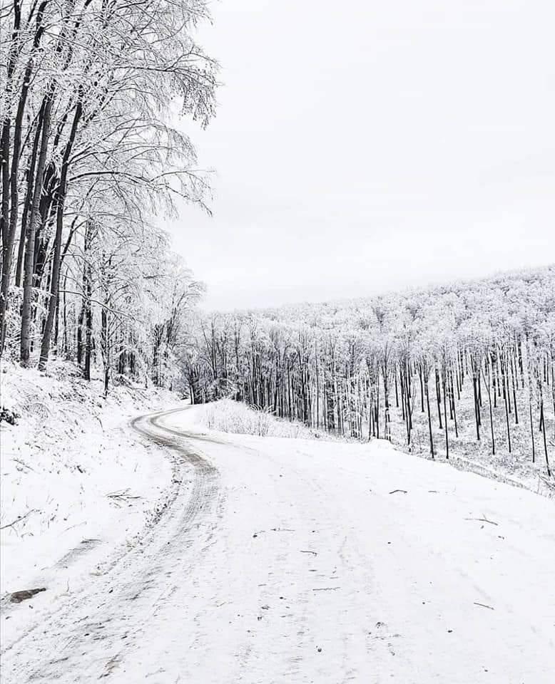 Cesta Velika-Jankovac otvorena za promet
