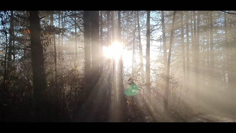 Danas jutarnja magla, kasnije sunčano i toplo