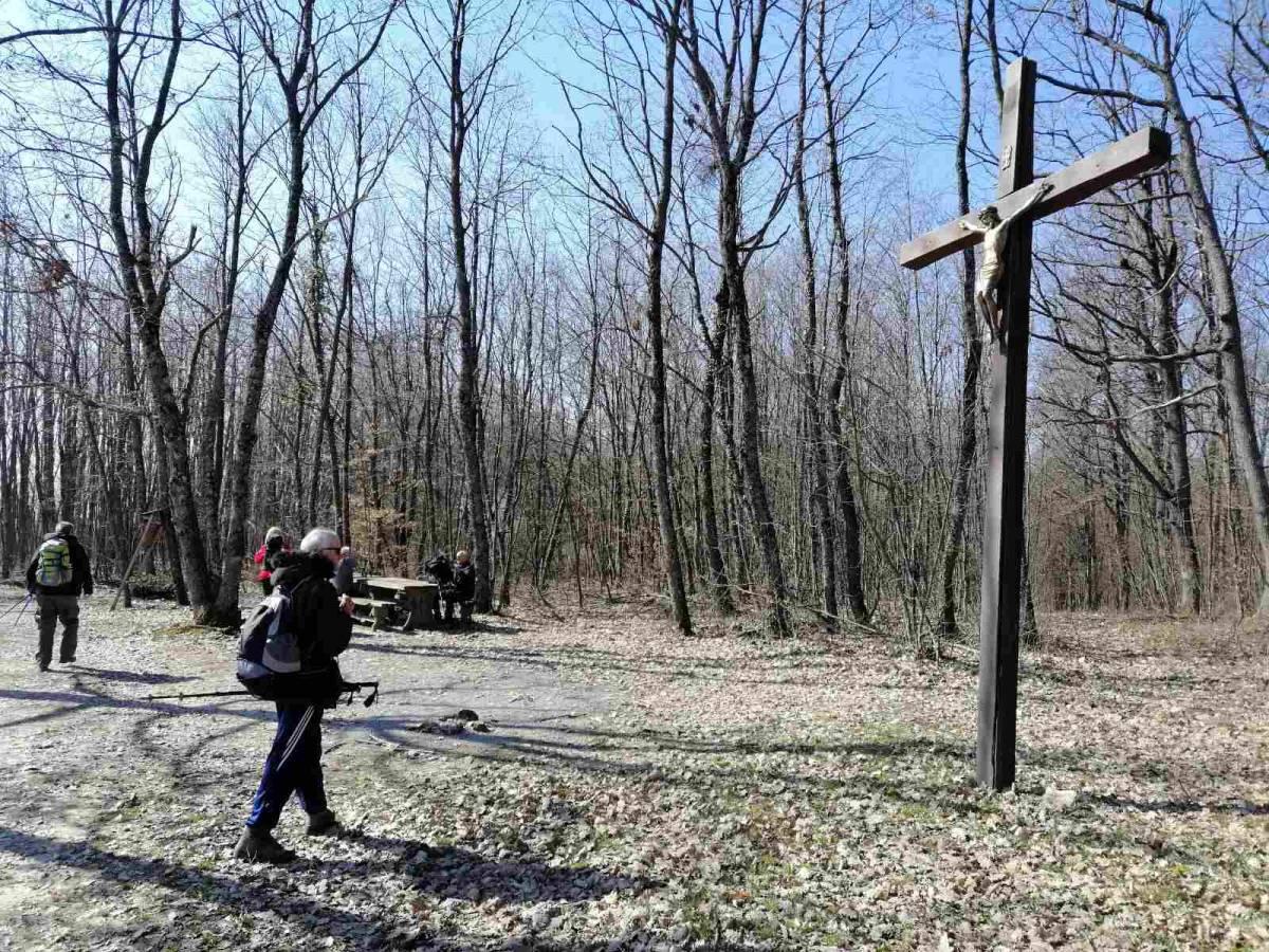 "Izlet HPD ""Sokolovac"" na Požešku goru vrh Klikun 07.03.2021"