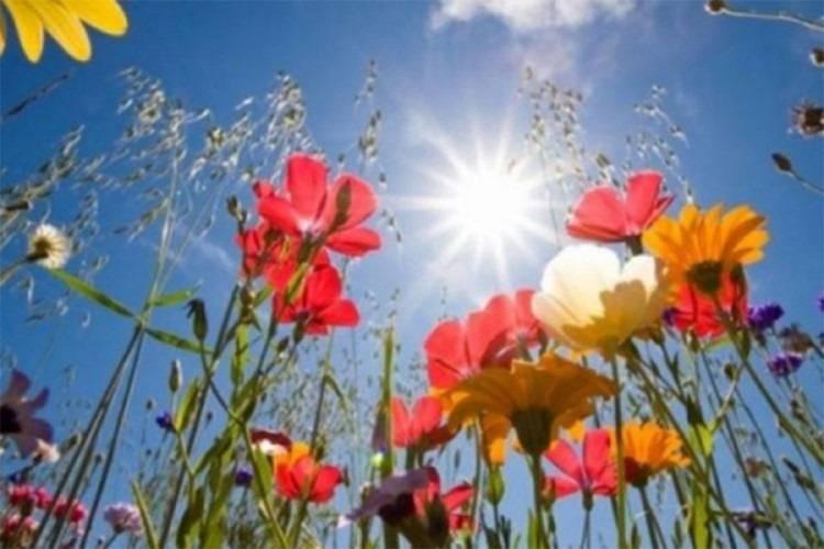 Danas sunčano, temperatura do 27 °C