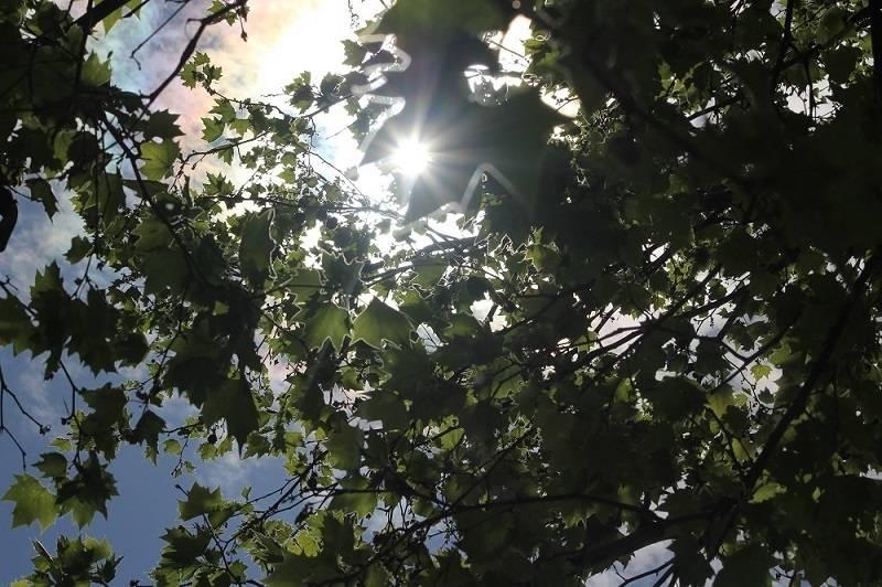 I dalje sunčano i vruće