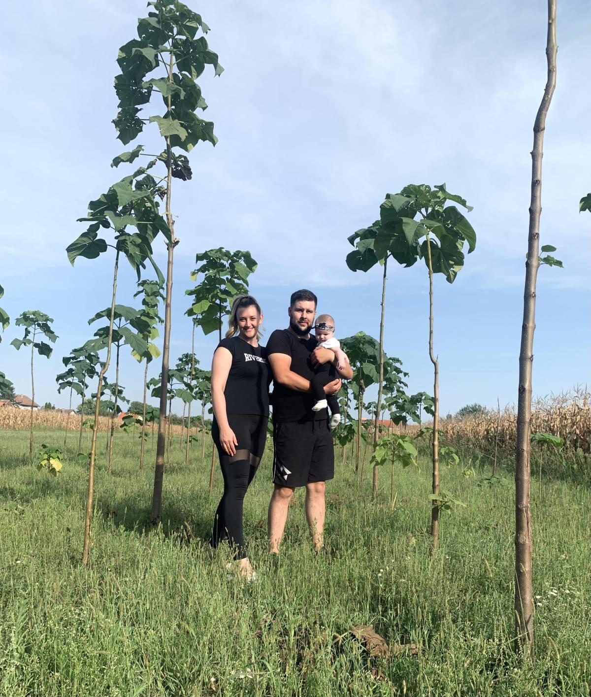 PONOSNI VLASNICI: Obitelj Glavanović iz Vukovara posjeduje 665 stabala paulovnije