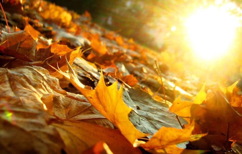 Jutro sunčano, no do kraja dana moguća je susnježica