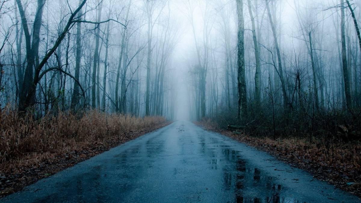 Danas maglovito uz kišu rosulju i snijeg