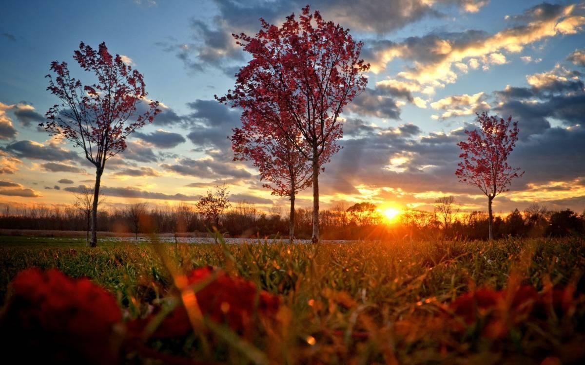 Danas pretežno sunčano, najviše dnevne temperature do 10°C