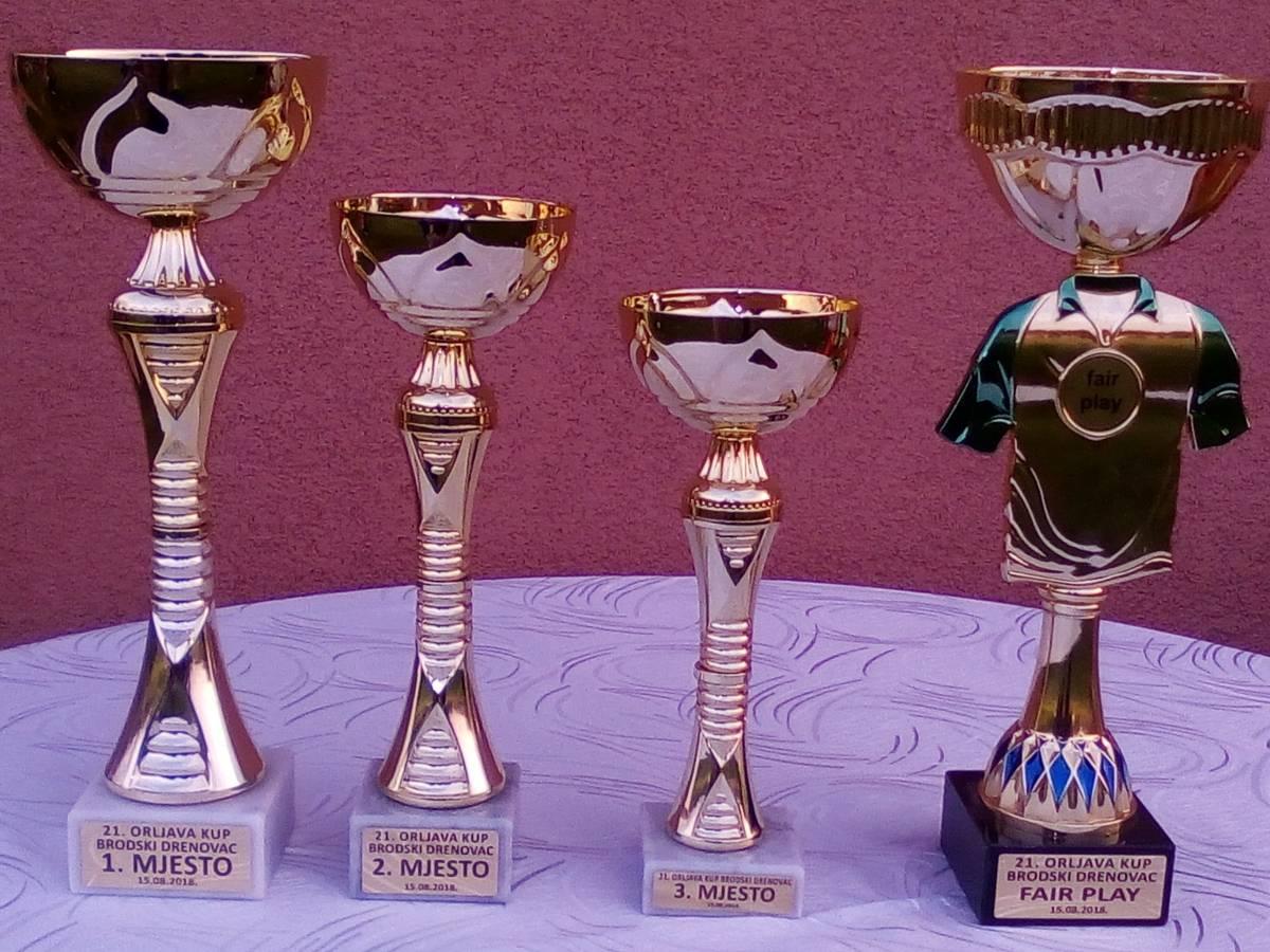 Treba li osnovati Sportski savez grada Pleternice!?
