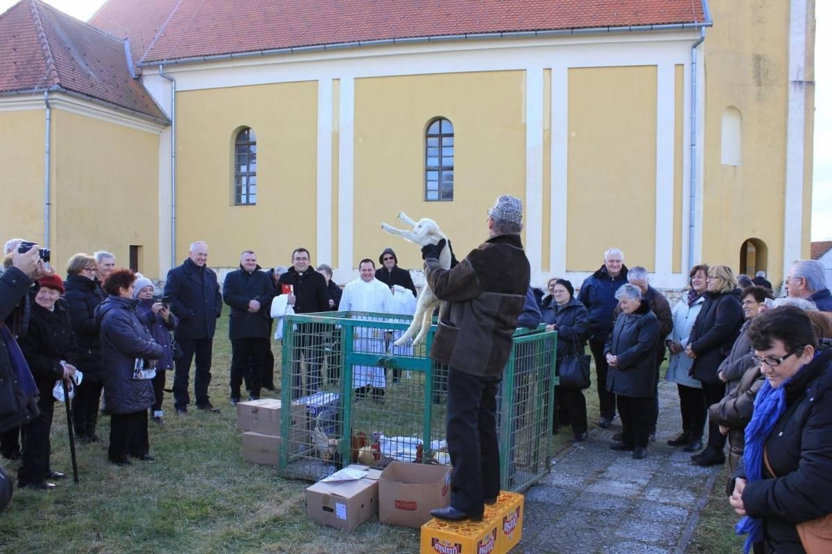 Uz blagoslov i licitaciju domaćih životinja proslavljen dan sv. Antuna Pustinjaka