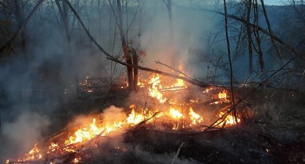Drastično povećanje broja požara u Požeštini, hara li našom županijom piroman?
