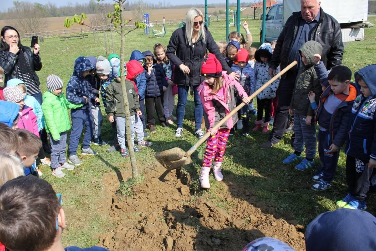 Gea park Lipik postao dom još jednom stablu kestena