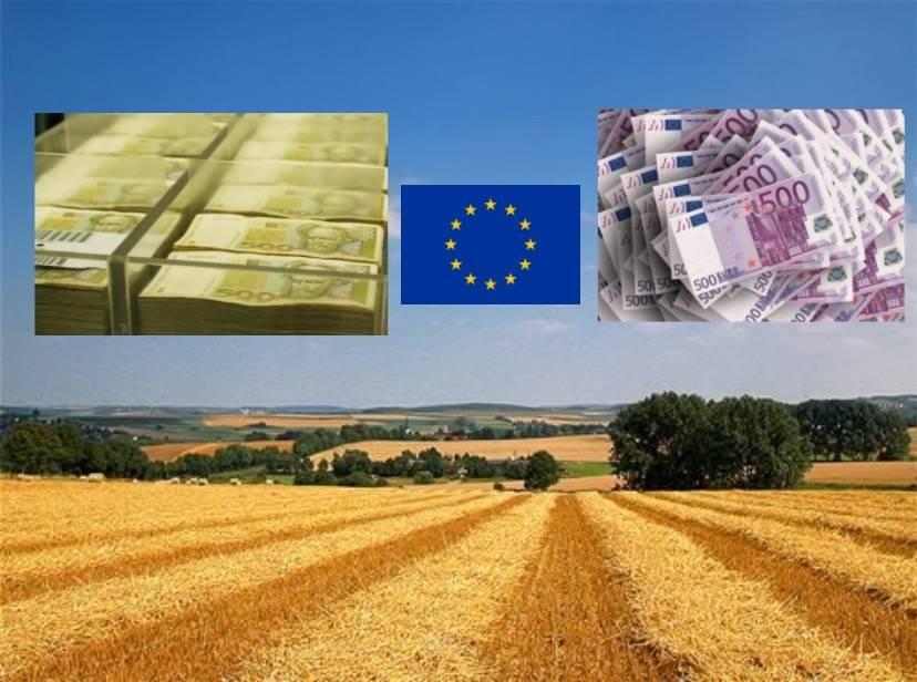 Tvrtke u Požeško-slavonskoj županiji koje su izvukle najviše novca iz Projekta Slavonija, Baranja i Srijem