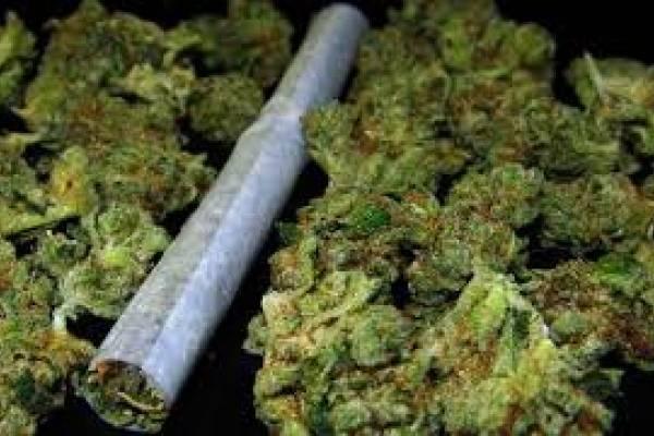 Policija tijekom vikenda našla marihuanu kod tri mladića