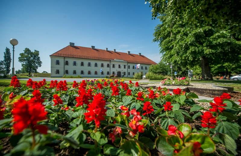 Godišnji plan raspisivanja natječaja za financiranje programa i projekata od interesa za Grad Slavonski Brod u 2020. godini