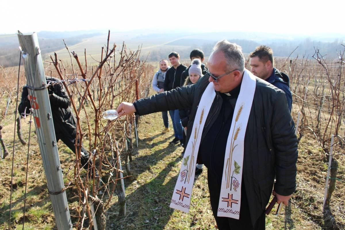 Proslavu blagdana svetog Vinka danas je održalo Veleučilište iz Požege