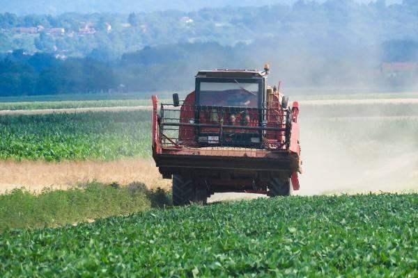 Proljetna sjetva: očekuje se povećanje površina pod kukuruzom i šećernom repom?