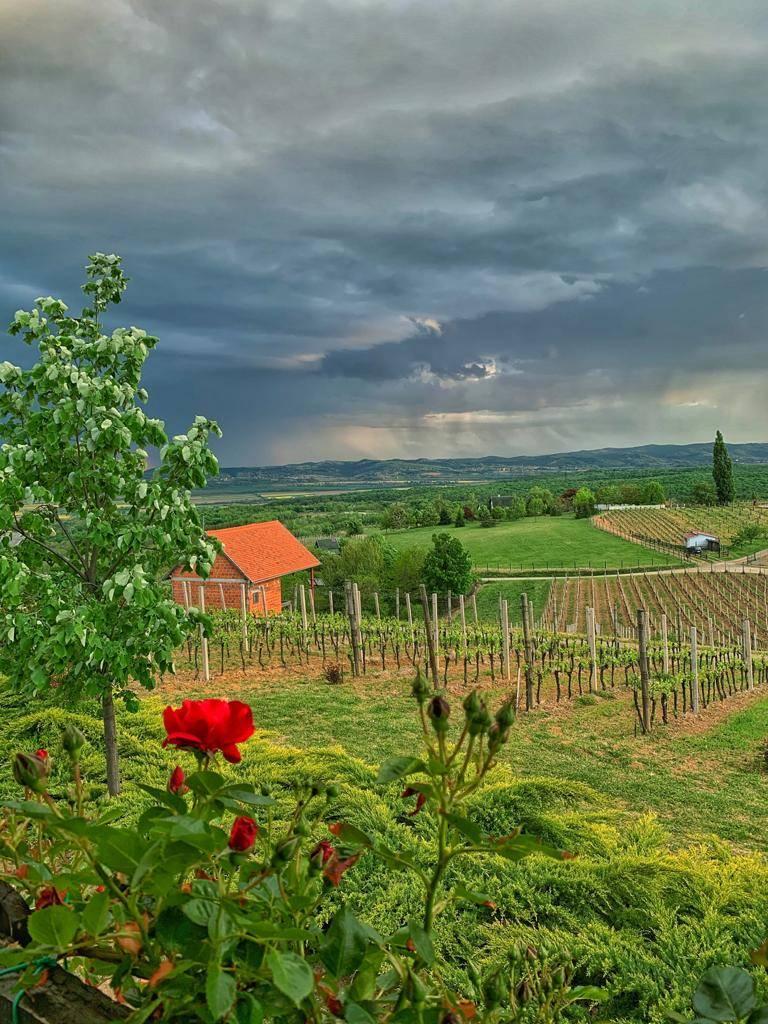 Danas promjenjivo oblačno uz moguću kišu