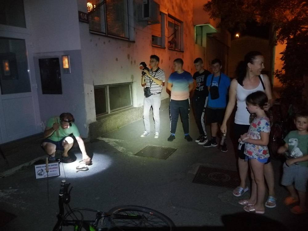 Zmija dužine više od metar i pol sinoć uznemirila stanovnike Lutvinke