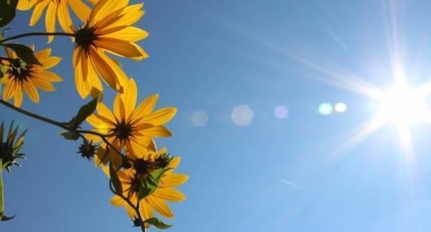 Najviša dnevna temperatura između 23 i 27 °C