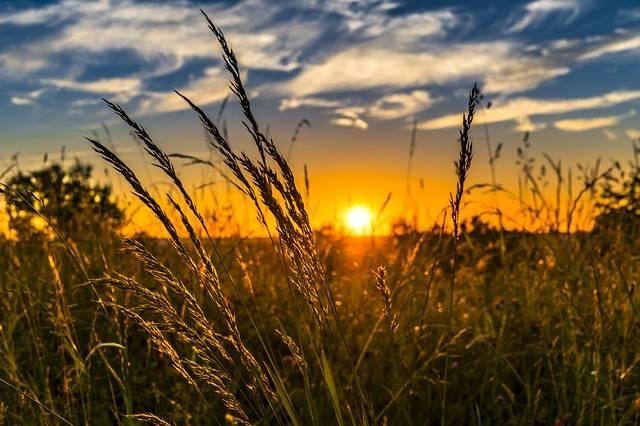 Vrijeme danas veći dio dana sunčano i vruće, najviša dnevna emperatura između 32 i 37 °C