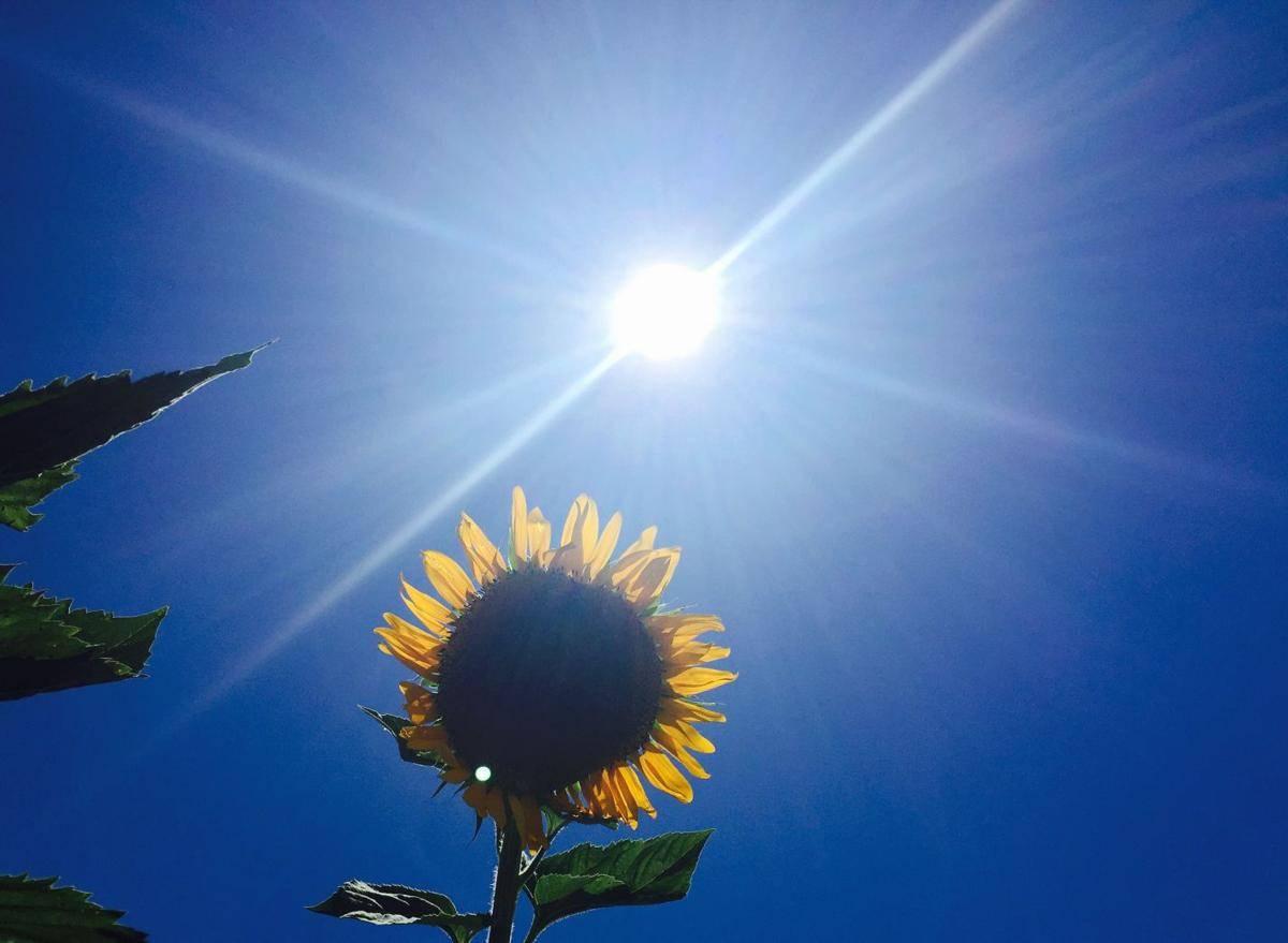 I dalje sunčano i vruće, najvša dnevna temperatura između 31 i 37 °C