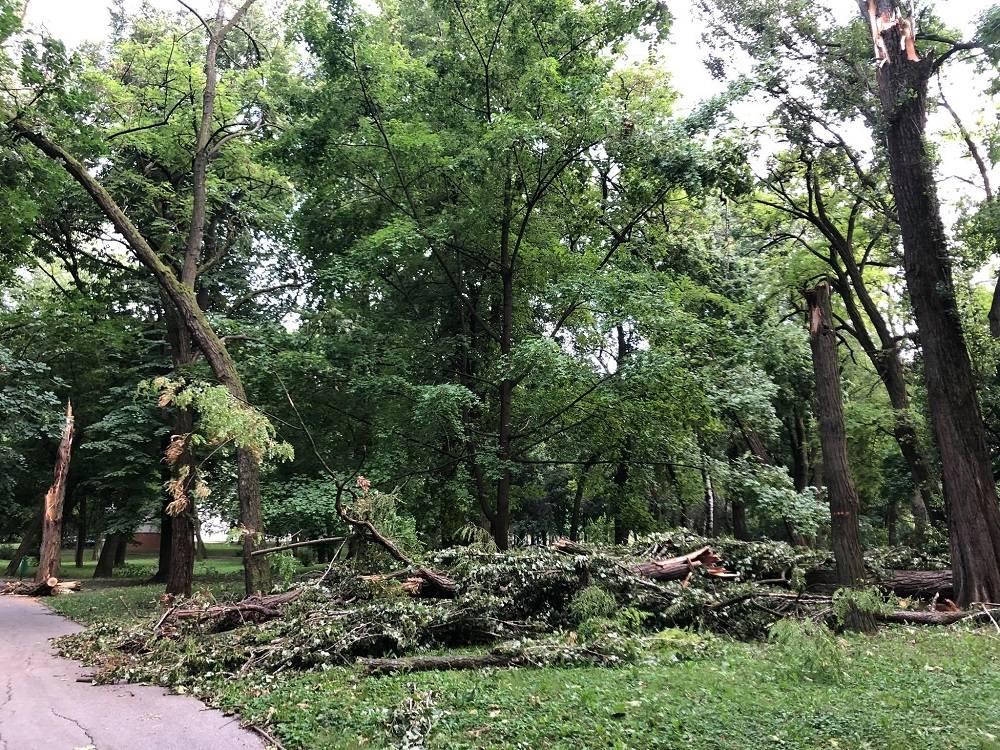 Pogledajte prizore iz parka Klasije dva dana nakon nevremena