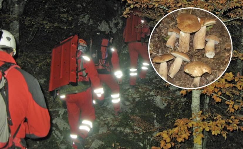HGSS Stanica Požega: Nestali gljivar je pronađen