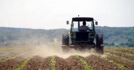 Za opstanak istočne Hrvatske, ključna je poljoprivreda i proizvodnja hrane