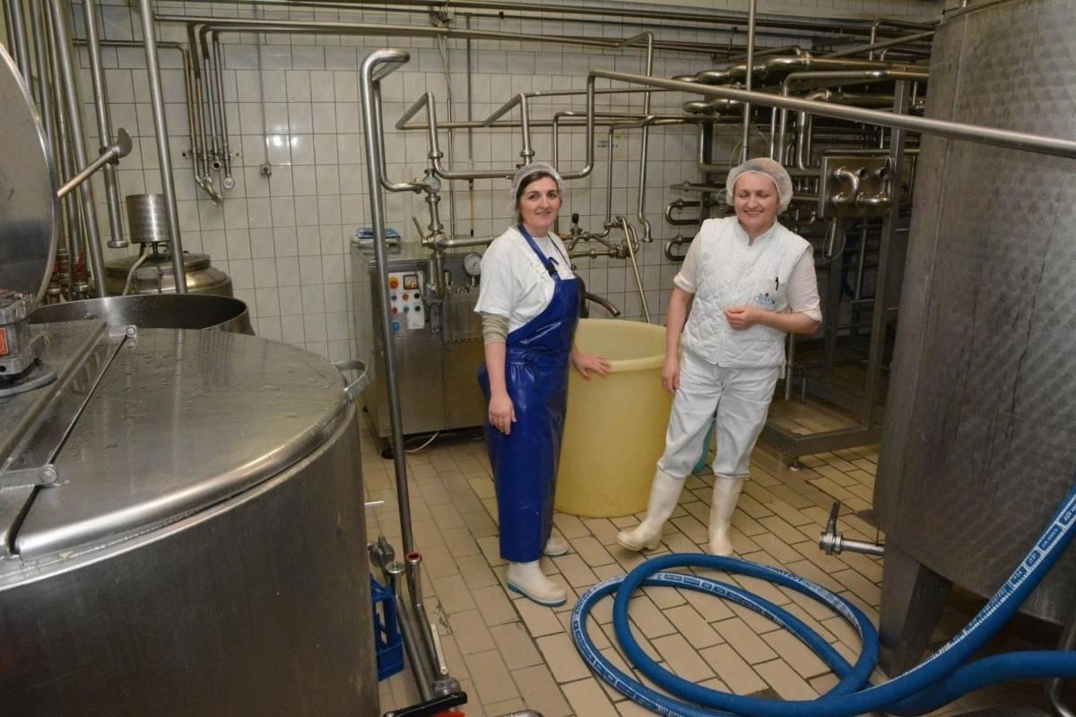 Cijena BiZ mljekare smanjena za 75%, sada se može kupiti za 78 tisuća kuna