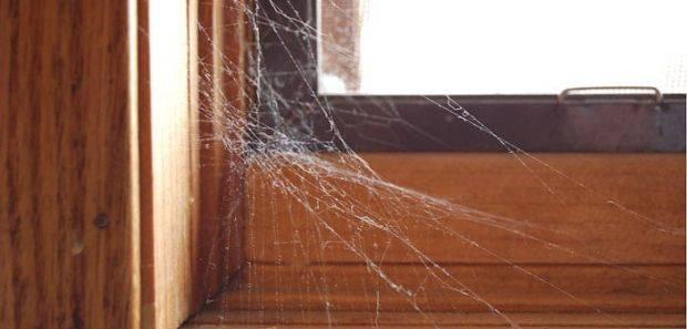 Jednostavan način kako se riješiti kukaca u svom domu. Dovoljan je jedan proizvod