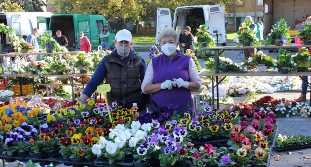 Na pakračkoj tržnici počela prodaja cvijeća i cvjetnih aranžmana uoči blagdana Svih svetih