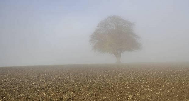 Vrijeme danas, oblačno s maglom