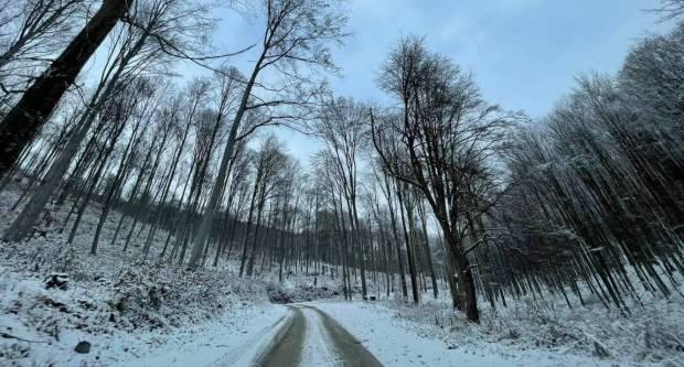Znanstvenici upozoravaju da nas uskoro možda očekuju ekstremno niske temperature i mećave