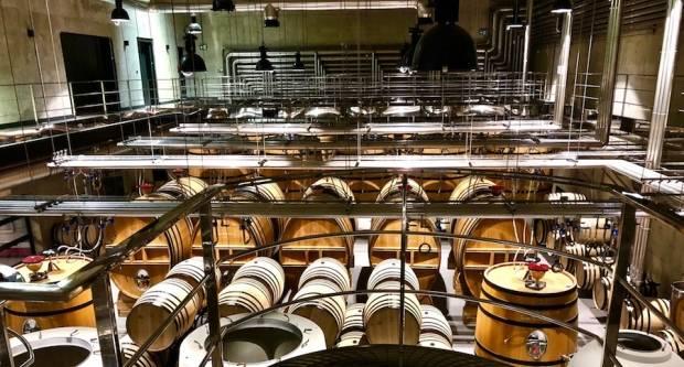 Daj onima koji nemaju - Nova vinarija Galić u Kutjevu svemirski je brod