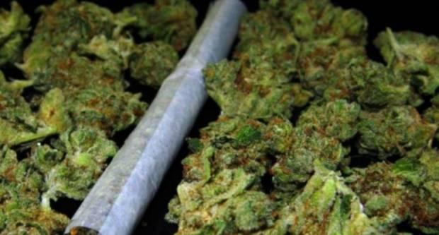 Kod Požežanina (43) u Industrijskoj ulici pronađena marihuana