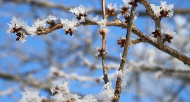 Županija proglasila elementarnu nepogodu zbog mraza