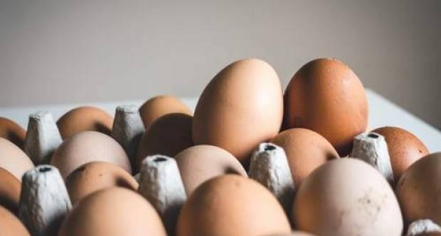 Uvodi se nova oznaka na jajima: Doznajte kako ona izgleda i što će točno predstavljati