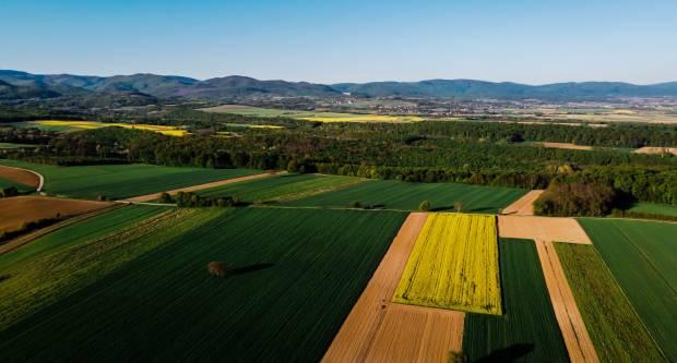 Javno otvaranje ponuda za prodaju poljoprivrednog zemljišta u vlasništvu RH na području Općine Velika