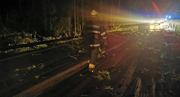 U Sl. Brodu palo stablo. Civilna zaštita objavila detalje dojava poslije nevremena