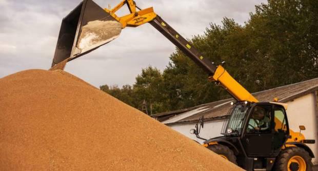 Očekuju se veće zalihe žitarica - pšenica se troši više nego kukuruz?