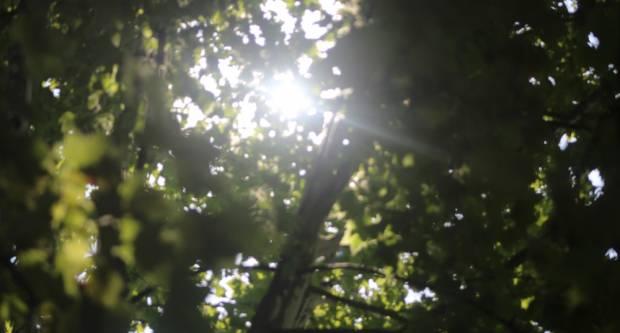 Danas sunčano uz mogućnost grmljavinskih pljuskova