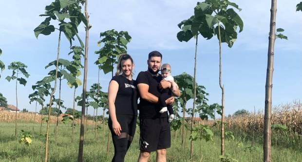 Mlada obitelj iz Slavonije uzgaja preko 600 stabala paulovnije