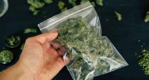 Prilikom nadzora prometa u mjestu Vesela, 20-godišnjak predao marihuanu