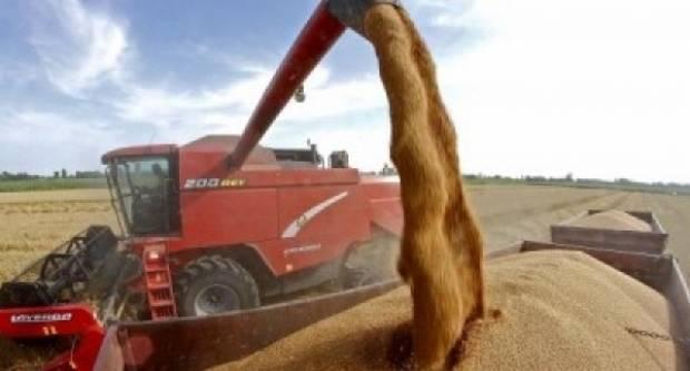 Hrvatska uvezla 52.000 tona pšenice iz nežitorodne Bosne i Hercegovine