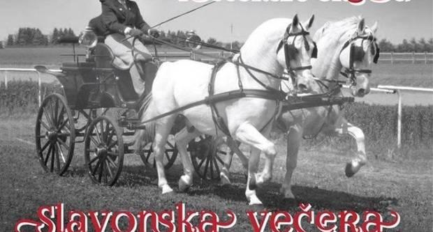 1. Lipičko Slavonsko sijelo