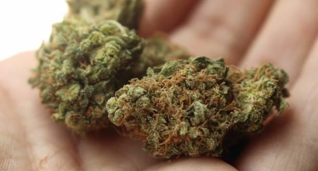 Kod 19-godišnjaka pronađena marihuana