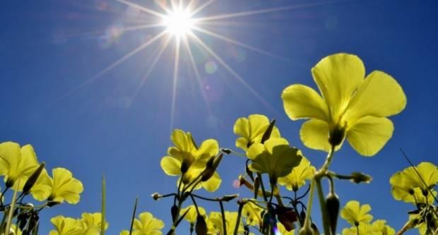 Napokon sunce, temperatura danas ide i do 21°C