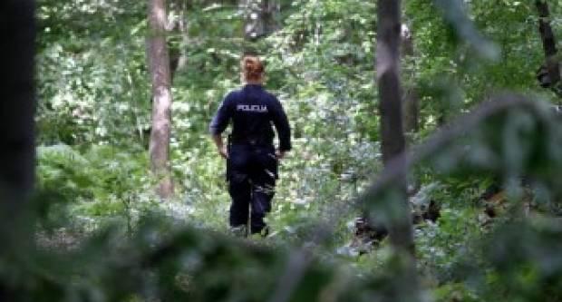 U šumi kod Vetova stablo palo na muškarca koji je hitno prevezen u OŽB Požega