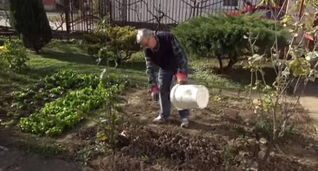 Požežani Božo i Zdenkica Milanović savjetuju kako napraviti dobar kompost u vlastitom vrtu