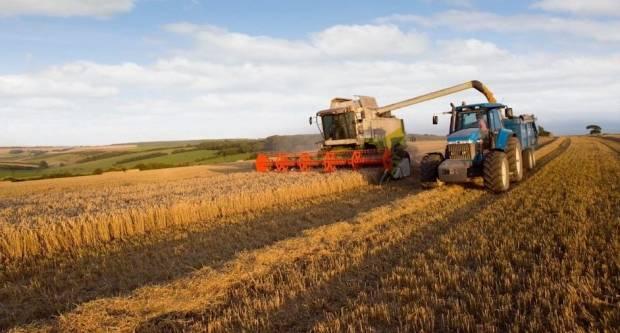Hrvatski agrar 2019: u veljači isplata prvog dijela izravnog plaćanja