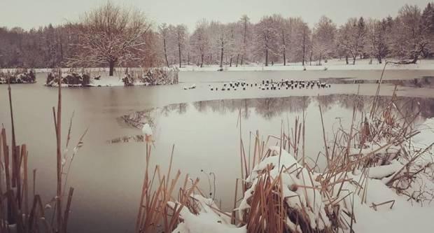 Zimska ljepota ribnjaka u Jakšiću
