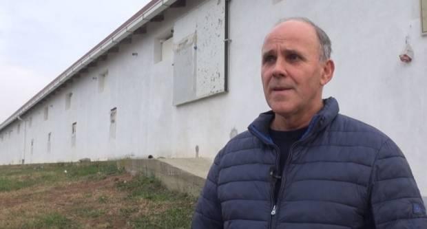 Milan Varešak iz Pleternice o proizvodnji peradi i jaja za rasplod